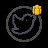 Купить подписчиков в Твиттер